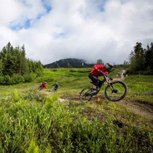 Creekside Downhill Mountain Biking