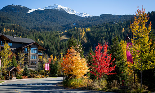 Fall Lodging & Activity Packages